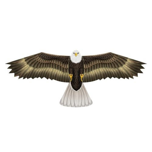 Amerikaanse zeearend roofvogel vlieger 112 x 50 cm 10109295